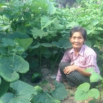 Photo of Mrs. Khut Roun crouching in her garden beside some squashes.