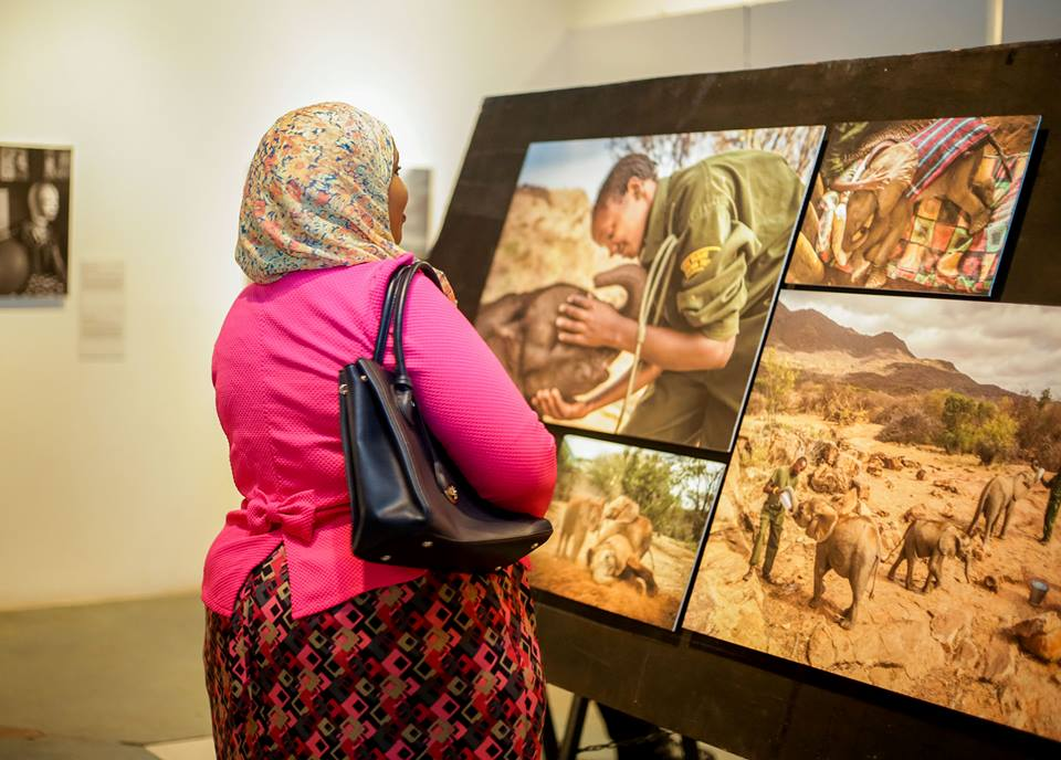 Woman looking at photos during the World Press Photo Exhibition